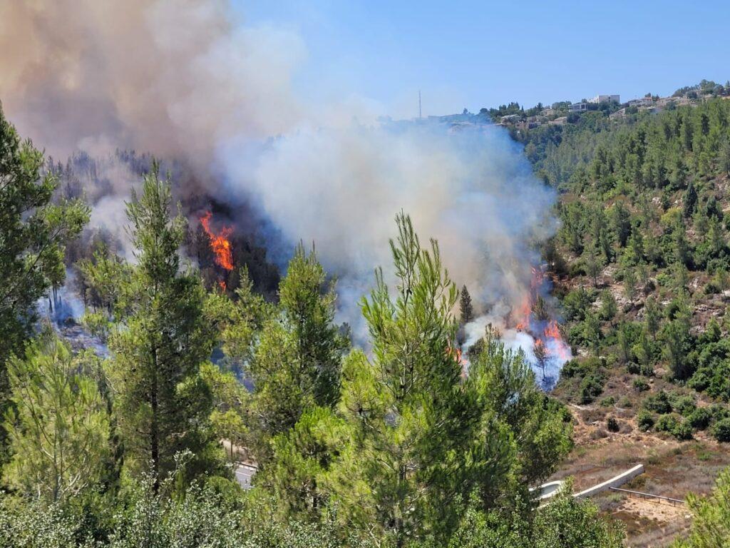 מספר שריפות ברחבי הארץ – חשד להצתות